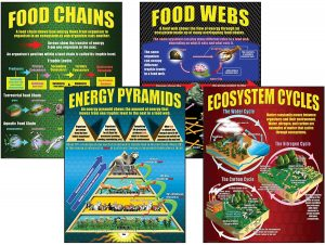 Ecosystems Teaching Poster Set