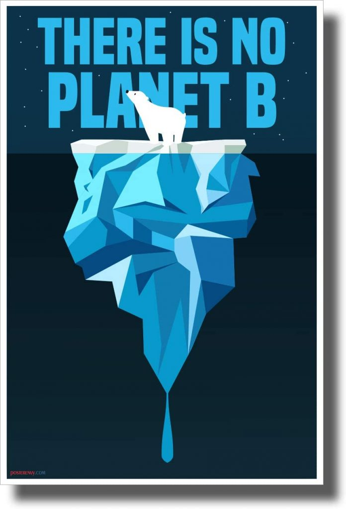 There is No Planet B - Polar Bear