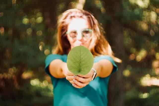 Sustainability Consultant
