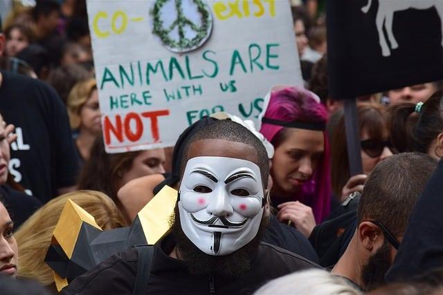 animal rights rally