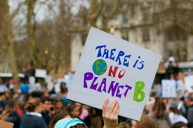 environmental activism