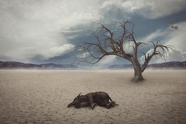 save animals facing extinction